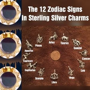 🍁FALL FOR🍁 12, VTG Sterling Silver Zodiac Charms